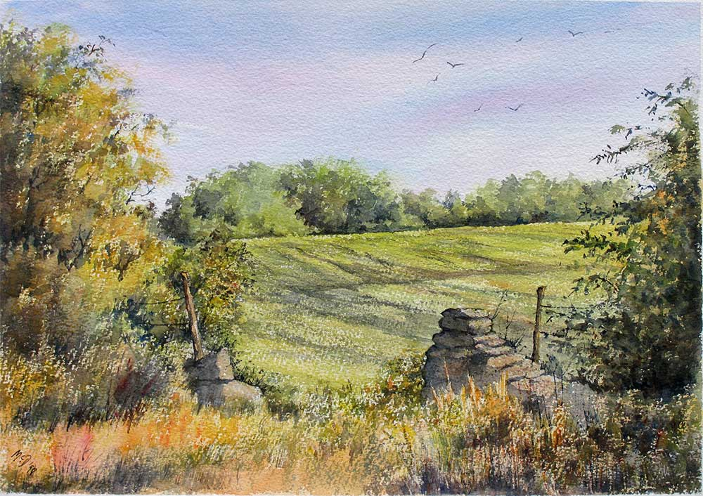 Field near Hawling, Gloucestershire