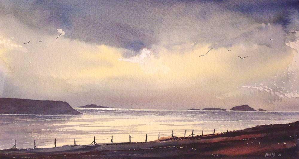 Coast at St David's